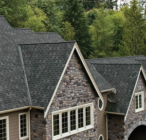 Beautiful Composition Tile Roof